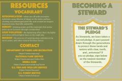 stewards_4_ward_c.alyx_