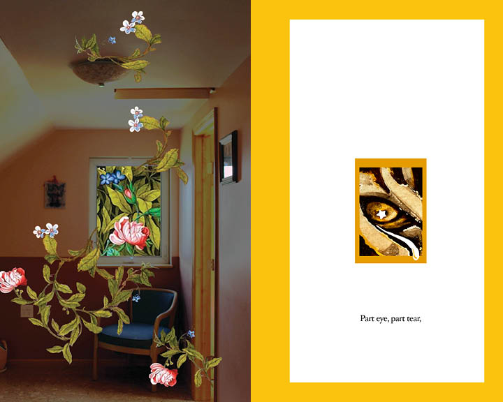 Sixth spread of Inspirations. Left, plants spread indoors from a window. Right, a tiger eye with a star is framed in orange.